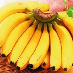 连云港香蕉